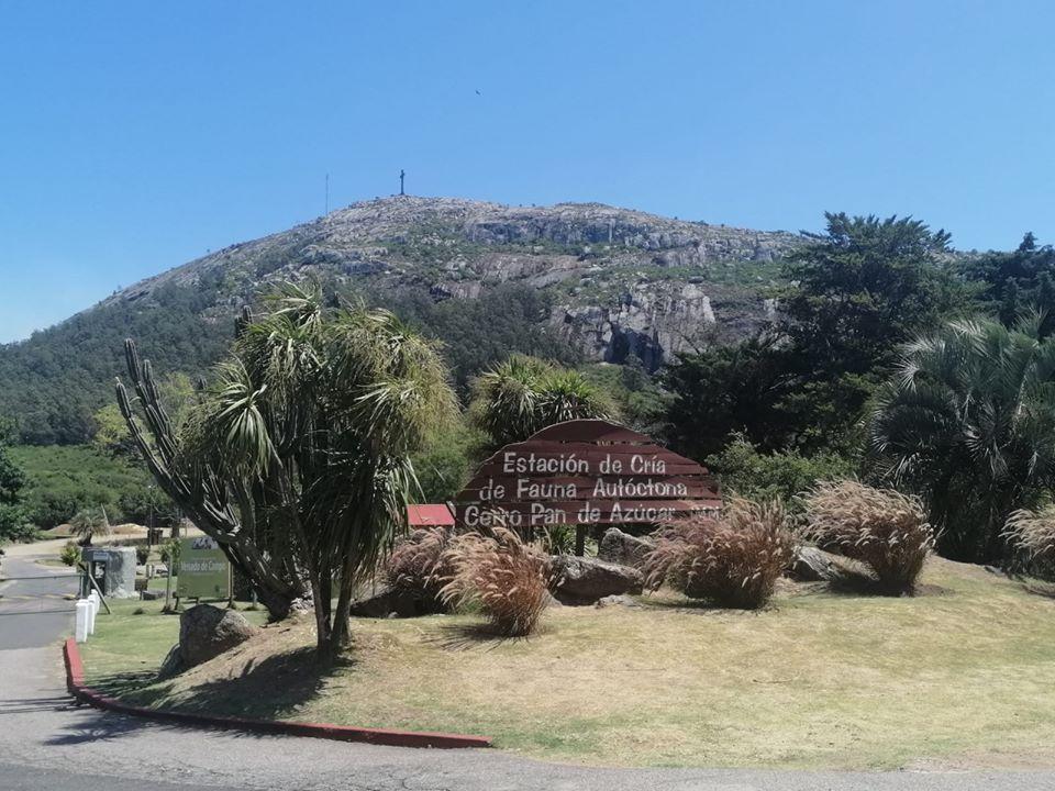 Reabrió parcialmente Estación de Cría del Cerro Pan de Azúcar